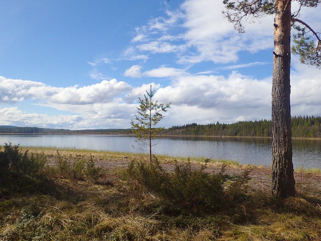 Sjön Hån, 500 meter från gården