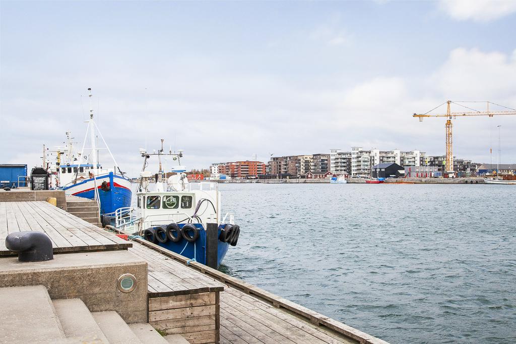 Närområdet - Limhamns hamnbassäng
