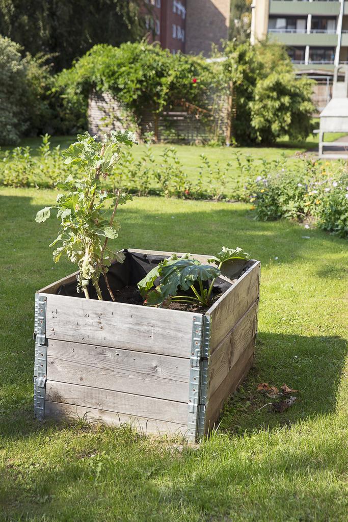 ... här finns även planteringslådor
