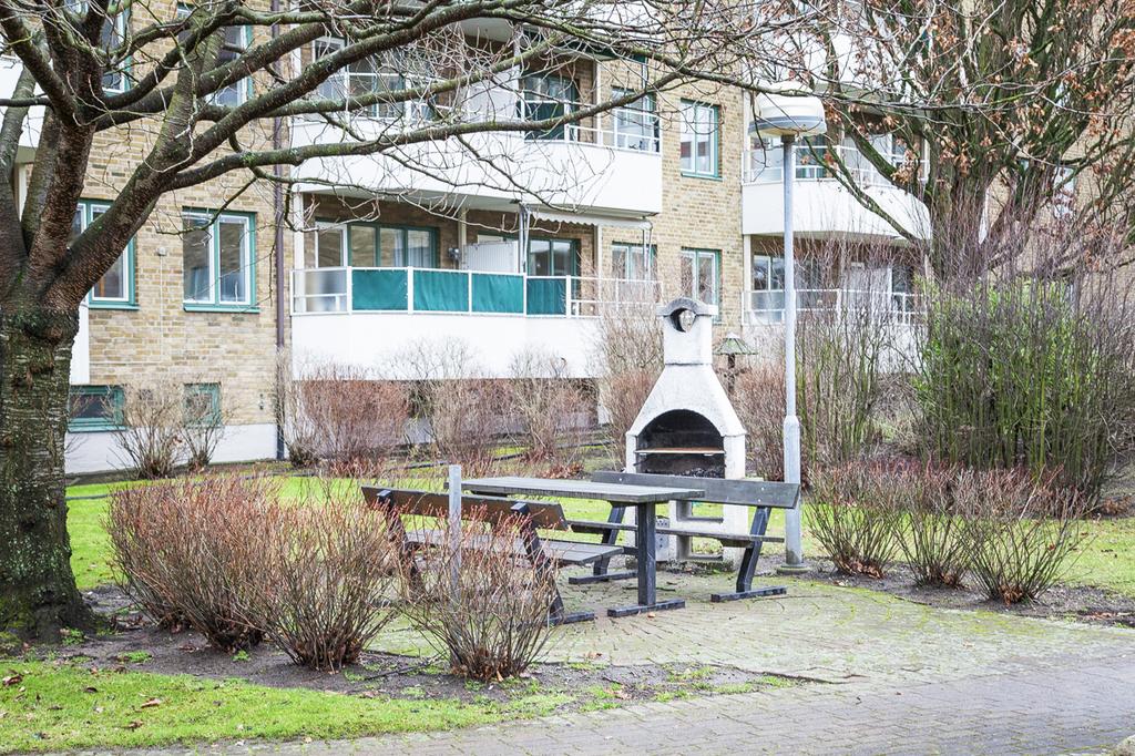 Den välskötta innergården, erbjuder flera grillplatser