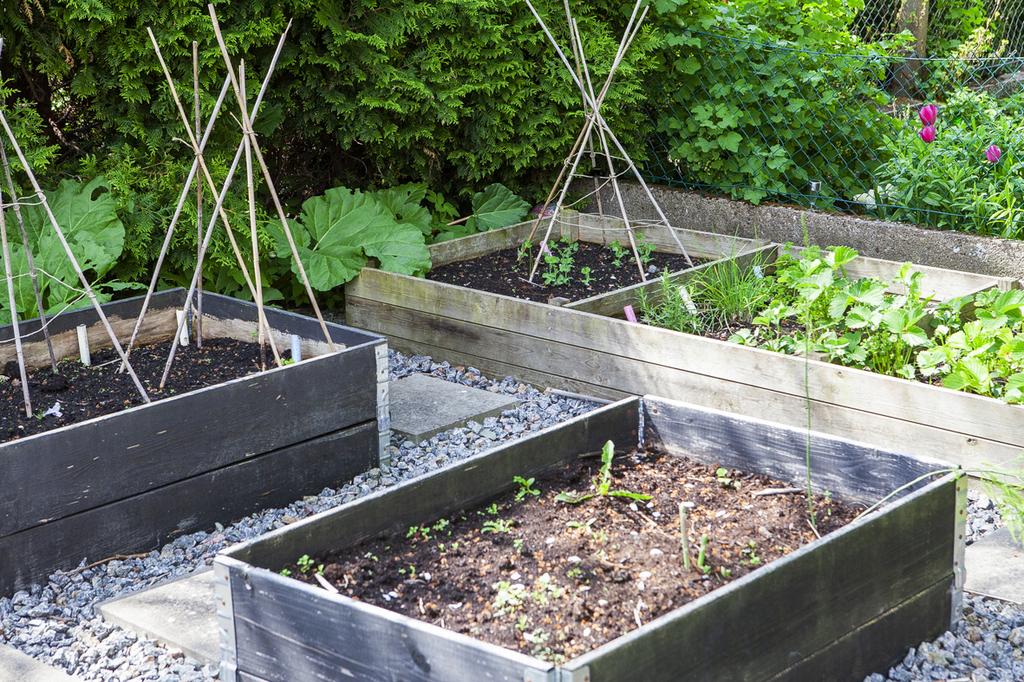 Planteringar i pallkragar